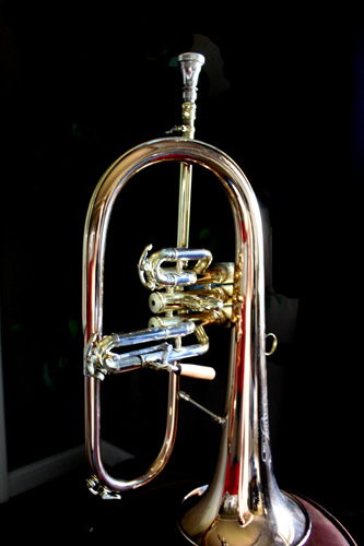 Which Flugel Horn Is The Best Trumpet Blog