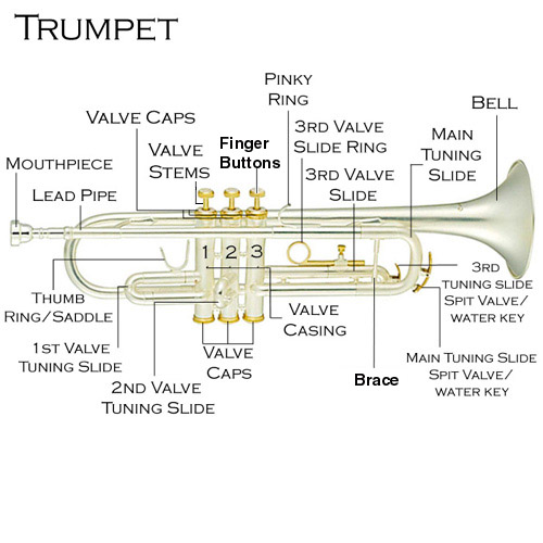 How do the physics of a trumpet work, given there are only three ...